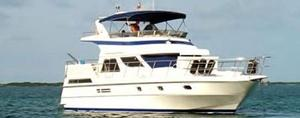 Vitech Yachts image