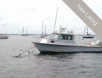 Used Boats: C-Hawk 24 Cuddy Cabin for sale