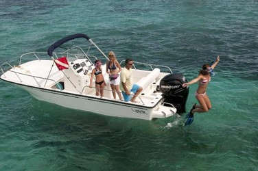 Used Boats: Boston Whaler 210 Montauk for sale