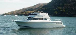 Skipjack Boats image