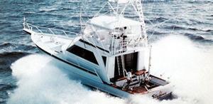 Striker Boats image