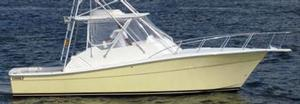 Topaz Boats image