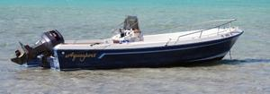 Aquasport Boats image