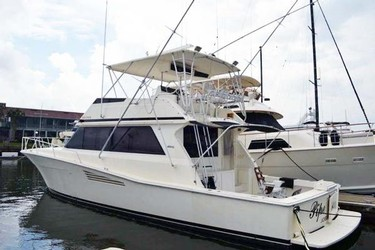 Used Boats: Viking Convertible for sale