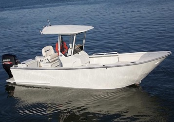 Used Boats: Custom 25 for sale