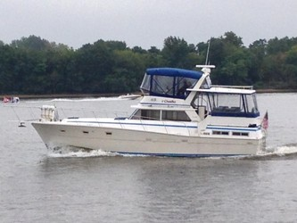 Used Boats: Viking