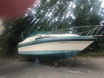 Used Boats: Sea Ray 268 Sundancer for sale